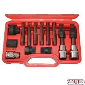 13 PIECE ALTERNATOR PULLEY TOOL KIT, ZT-04802 - SMANN TOOLS
